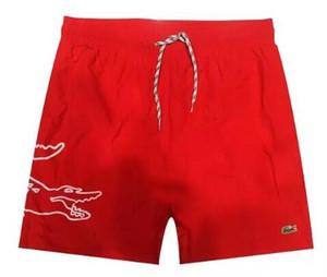 Büyük timsah baskı Ürün detayı Timsah nakış Kurulu Şort Mens Yaz Plaj Şort Pantolon Yüksek