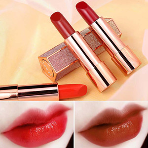 LEEZI matte smooth lipstick moisturizing easy to wear sexy red purple vampire pigment starry sky velvet lipstick tint LZ001 free shipping
