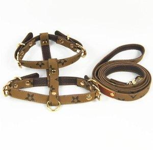 Brown Leather Harnesses Dog trelas Cat Pet Coleiras exterior Caminhada Viagens Must Eco-Friendly trelas frete grátis Hot
