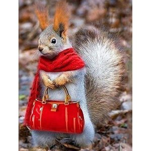 New 5D Diy Diamond Painting Animal Squirrel Carrying Bag Full Drill Diamond Embroidery Home Decoration Mosaic Wall Hanging Gift