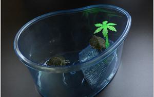 Вивариум Черепаха Место обитания Озеро Террапин Аквариум с рептилией Аквариум с платформой для растений Черепаха Бак Ящик Черепаха Дом Рептилия Клетка