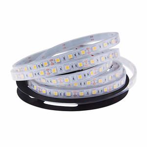 LED Strips Lights Blu Bianco Warm White Multicolor RGB IP68 in The Water Fish Tank Illuminazione 5M Light Strip per piscine DC12V