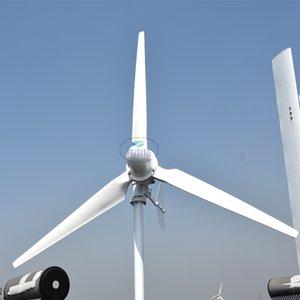 горячий продавать FLTXNY 5kw Горизонтальный ветротурбины генератор 220v Ветер ветроэнергетика мельница для домашнего использования HIG