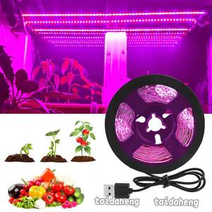 전체 스펙트럼 LED는 빛 Fitolampy이 식물 5V의 USB LED 스트립 방수 꽃 실내 성장 텐트 라이트를위한 램프를 성장 스트립 성장