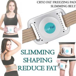 Портативная мини Размер Pain Free тело для похудения Fat Loss красоты машины Cryolipolysis терапии Жир Замораживание Mini Cryo Pad машина для похудения для живота