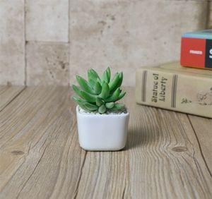 Plantes succulentes charnues Céramique Couleur Pot Blanc Simplicité Mode Mini Flowerpot Bureau Bureau Décoration Nouvelle arrivée 1 78fy E1