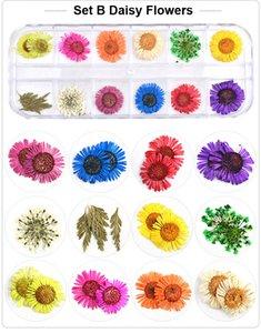 NA054 12 colori Fiori secchi di arte del chiodo delle decorazioni 3D naturale Daisy Gypsophila conservati a secco floreale fai da te Adesivi Manicure della decalcomania della decorazione