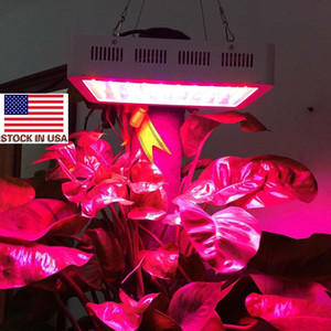US Stock Full Spectrum 1000W 1200W LED Grow Light AC85-265V Double Chip Led Plant Lamps Best Indoor Grow Tent For Growing and Flowering