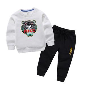 Primavera autunno Ragazza ragazzo vestiti Vendita calda bambino Set di abbigliamento Cartoon Stampa Felpe e pantaloni 2 pezzi manica lunga bambini vestiti fen-AD02