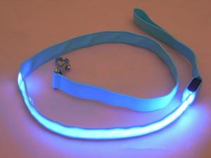 Nylon LED Light Up Dog Leash Noite Segurança LED Piscando Brilho Na Coleira De Cachorro Escuro Pet Supplies Cat Desenho Pequeno Chumbo LED Dog Leash