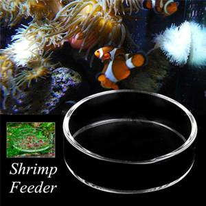 Şeffaf Cam Kristal Karides Besleme Gıda Bulaşık Besleyici Tepsi Yuvarlak Konteyner Fish Tank Akvaryum Tropikal Balık Bowl Aquarium Besleme