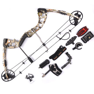 Compound Bow 2 Color 30-70lbs Archery Compound Bow Set Aluminum Alloy with Bow Accessories for Outdoor Hunting Shooting