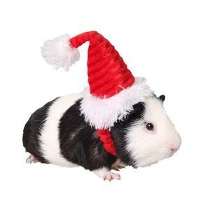 Small Pets Christmas Festival Santa Hat Hamster Squirrel Costume Decorations