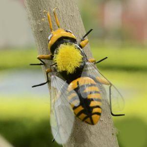Ornamento de insectos 10x pastizales realista abeja imán Vivid figurilla de barro Modelo estatuas de bricolaje Micro césped del paisaje Escultura Decoración verano