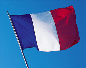 100% Polyester France Flags and Banners Outdoor Indoor 150x90cm for Celebration Big Flag France National Flag Banner Blue White Red DHL Free