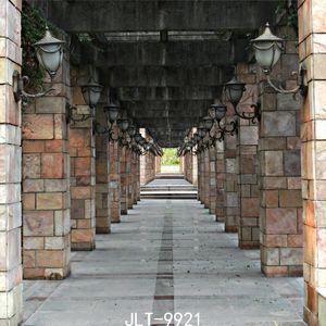 Shengyongbao Vinyl Custom Photography Backdrops Prop digital printed Horizontal Photo Studio Background JLT-9921