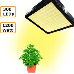 1000W 1200W LED-Licht Empfohlende Hohe Kostengünstige Doppel Chips volle geführte Spektrum wachsen Lichter für Hydroponik wachsen
