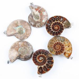 Pedra Natural Ammonite Fósseis Seashell Caracol Pingentes Oceano Reliquiae Concha Animal Colares Declaração Homens Jóias