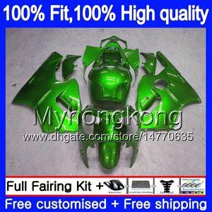Inyección OEM para Kawasaki ZX 12R ZX1200 1200 cc 2002 2003 2004 2005 2006 224MY.57 ZX 12 R ZX12R ZX12R 02 03 04 05 06 carenado verde brillante