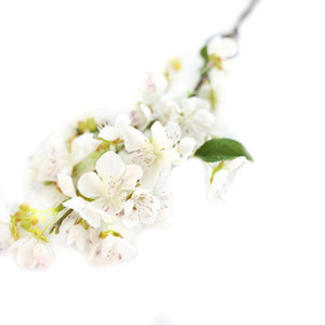 The New High Quality Artificial Flower Peach Blossom Floral Wedding Bouquet Party Decoration Artificial Flower Home Outdoor Decoration
