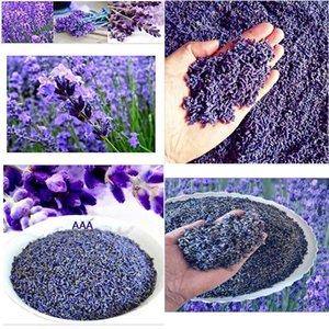 getrockneten Blüten Samen Natürliche Lavendel Getrocknete Blumen-Korn-Groß Lavendel Kornfüllung 1 Unze Reale natürliche dauerhafte Lavend