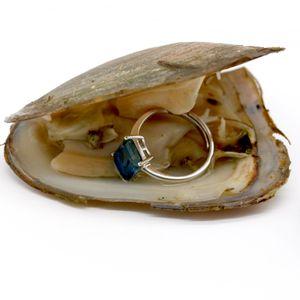Fortune Huîtres d'eau douce avec bague en argent sterling Gem ou Bague perle Bijoux Cadeaux Shell Amour Rêves Huître perlière emballé sous vide