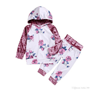 Kid Girls Clothes Pink Flower Hooded Velvet Outfits Tops Pants 2-piece Set Baby Clothing Kids Casual Clothes Preppy Suit Boutique