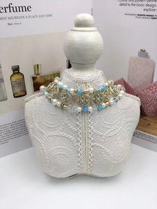 N2019 женщины женщины дамы Личность жемчужина красочные короткие ожерелье ключицы цепи Уникальный дизайн ожерелье с коробкой бесплатная доставка