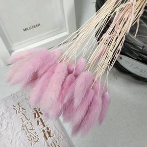120pcs / lot, Cola Natural Flores secas, tacto verdadero flores artificiales por la boda de la decoración del hogar, arreglo de tiro apoyos