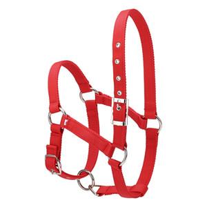 Pratico regolabile Equitazione Attrezzature Halter Horse Bridle con Bit e Rein cintura per Horse Equestrian Accessori addensare