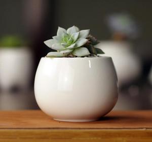оптовые суккуленты горшки декоративные простые белые мини цветочные горшки плантаторы суккулентные растения в горшках на столе SN658