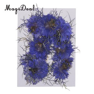 Artificial Decorations Artificial & Dried Flowers 12pcs Love-in-a-mist Natural Pressed Real Dried Flower for Craft DIY Resin Ornaments