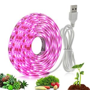Tam Spektrum LED Lamba USB LED'i Kapalı Bitki Çiçek Fideler Strip 2835 SMD 0.5m 1m 2m Fitolampy büyütün ışıkları Grow