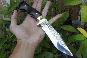 Лучшие качества Открытый выживания охотничий нож высокоуглеродистой стали сатин Bowie лезвия Полный Тан Ebony Ручка Fixed лезвия ножей Кожаный чехол