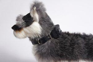Atacado 10pcs Dog Training Collar recarregável Dog Collar Choque para Barking Impedimentos 100% Training Collar impermeável para DogBlack