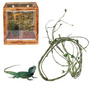 Pet Habitat Decor Reptile Reptile Supplies Pet simulato Rattan Rainforest pieghevoli decorazione per Lizards Frogs Snakes Reptile