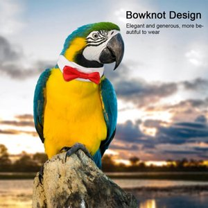 Pet Bird Clothes Parrot Necktie Lovely Elegant Bowknot Tie Hand-made Small Tie