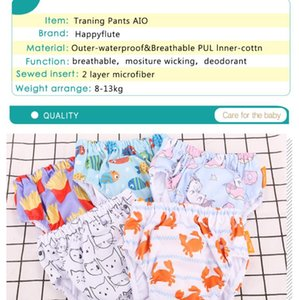 HappyFlute Adjusting Training Pants Baby AIO Cloth Diaper  Reusable Diapers 2 sizes diapers 1pcs Pack