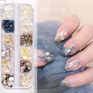 12 Grids Box Nail Art Decoration Set Natural Shell Nail Art DIY Decoration Manicure Tool Accessories