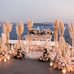 Düğün Dekorasyon Çiçek Pampas Çim Büyük Ev Dekorasyon Ücretsiz Kargo Dedicated 10pcs Gerçek Pampas Çim 80cm Düğün