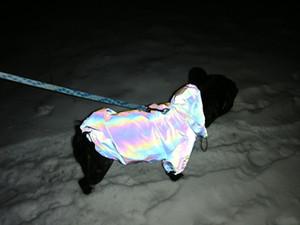Moda roupas para cachorros piscando Pet Cães Hoodie para Dog Coat Blusão Reflective Vestuário Grande Jacket Pug pequeno cãe