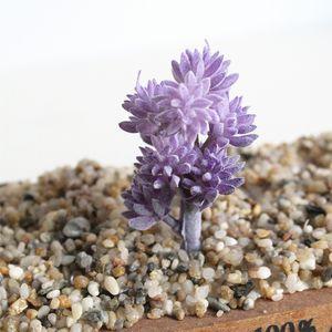 T 1pc artificiale succulente piante finte neve sottile pianta erba Ornamenti Lithops artificiale Succulente posteriore Piante da sposa