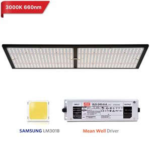 Super Bright 240W LED wachsen Licht Quantum Brett Full Spectrum Samsung LM301B SK 3000K 3500K 4000K 660nm Meanwell Fahrer