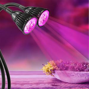 BRELONG LED çiçek tohumu hidroponi için klip tip bitki kapalı dikim lamba kapalı 10W çift tarihinde adlı Fitolampy led Işık çift kafa / büyütün