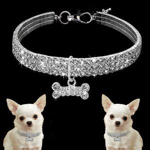 Collari collare 5pcs Exquisite Bling collare di cane diamante domestico del cucciolo lucido collana strass completa articoli per animali domestici cani piccoli