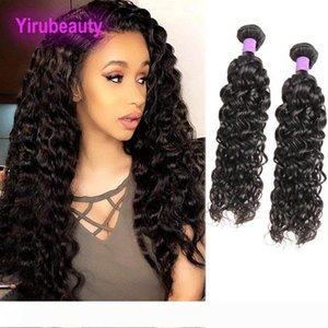 Malaysian Wet And Wavy 2 Bundles Unprocessed Human Hair Extensions Two Bundles Hair Extensions 8-28inch Wateer Wave Curly Hair Weaves