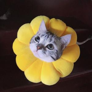 yavru köpek aksesuarları için kullanılan Sevimli çiçek şeklinde kedi ve köpek tasması köpek yavruları yaka Elizabeth yaka,