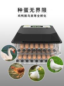 Otomatik Hepsi-bir-arada Yumurta İnkübatör Kontrolörü Chicken Ördek Kaz Tek düğmeli Operasyonu Couveuse Clarity Termostat için