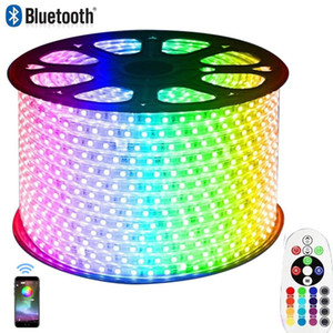 Bluetooth / APPP RGB LED Strip Light, Flexible 220V Color Changing Water Defeable Rope Light with Remote 60led / m for Building Outdoor Home