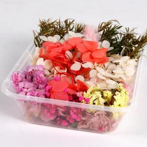QIFU 1 Caja verdadera mezcla de flores secas de plantas Resina Epoxi Vela joyería prensados en seco Flores que hace el arte DIY Accesorios